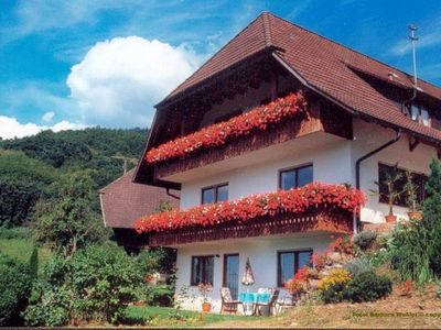 Photo for Forest, hiking, cycling, pet-friendly, sightseeing, excursions, Europa Park