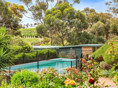 Photo for Las Vinas at McLaren Vale, Central and Private on 4 acres