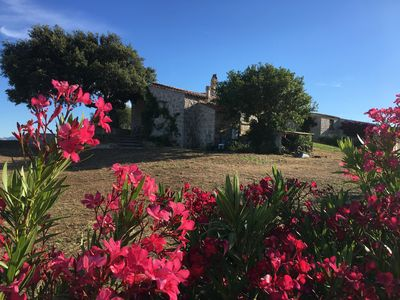 Photo for holiday home in Sardinia near Olbia typical country house