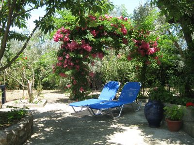 Photo for Christina Cottage In Stafylos, Skopelos, Greece