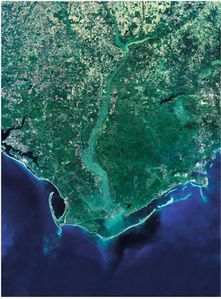 Ariel view of the Apalachicola River System....beautiful!