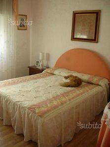 Photo for Apartment in known in via pavia siracuso