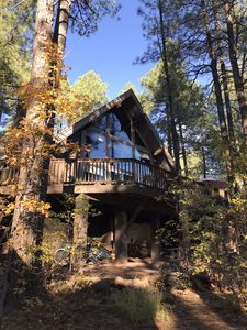 New Listing: Beautiful Cabin In The Pines On Cul-de-sac