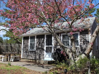 Photo for 2BD Bayside Cottage--Only 0.2 MI to Powers Landing Beach