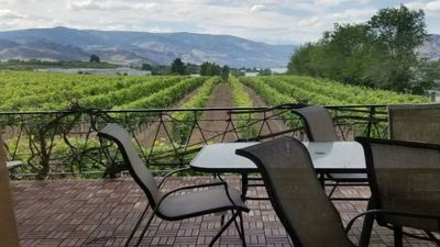 Photo for Lakefront Large rustic vineyard house in Osoyoos