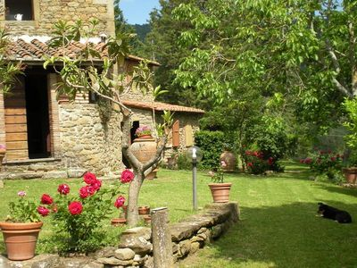 Photo for Cosy house with private pool near Cortona