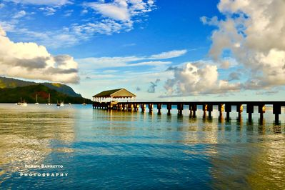 Captured on my early morning walk to Hanalei Pier from my home 1 mile walk down.