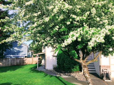 Photo for 1BR Apartment Vacation Rental in Silverdale, Washington