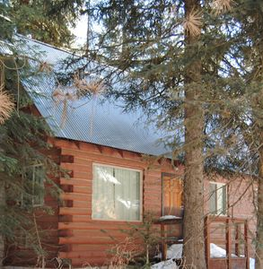 Photo for Little Cabin at Ponderosa