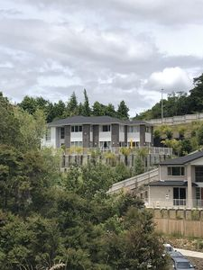 59 Blacks road, an imposing house in a quiet wooded valley