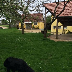 Photo for Holiday apartment Ehingen for 2 - 4 persons with 1 bedroom - Holiday apartment in a farmhouse