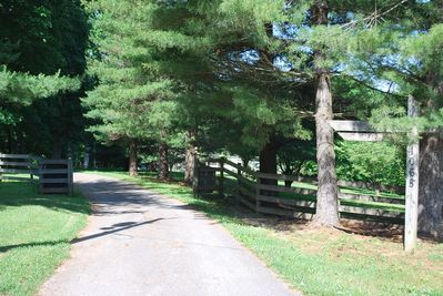Private gated drive to the main house and suite.