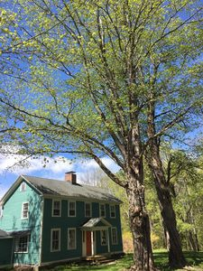 Two of our properties WOLF TREES, in the full bloom of spring.