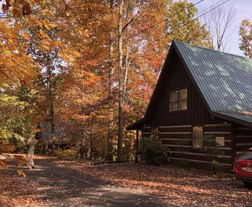 Photo for Sunshine In The Woods, 10 minutes from Gatlinburg!