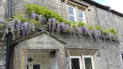 Wisteria overhanging the cottage entrance from May to June
