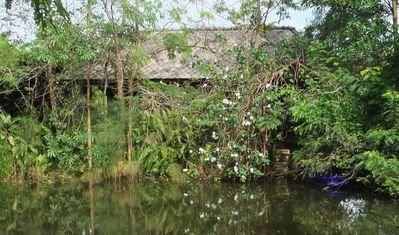 Photo for Lakeside Single-Room Bungalow in Nature
