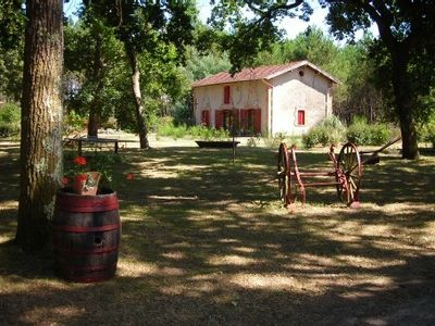Photo for Landes restored old cellar in friendly house for 6 people