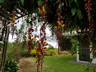 Photo for FREE Zip Line Tour with 1 week stay at the Home at Botanical World