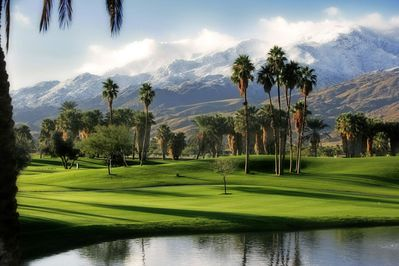 Take in the natural beauty from one of the 5 scenic golf courses close by.
