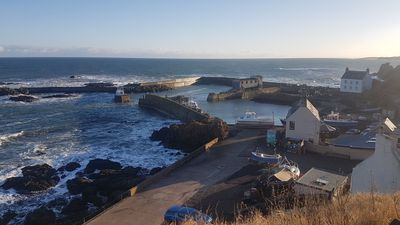 Photo for Charming refurbished cottage with sea view and lovely garden