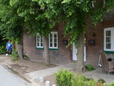 Photo for Holiday home for 6 guests with 76m² in Wyk-Boldixum (121677)