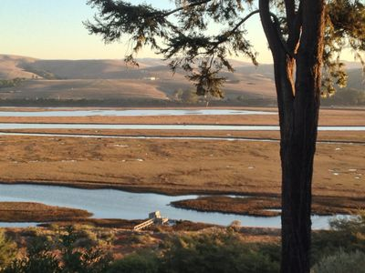 Photo for Tide View on Tomales Bay
