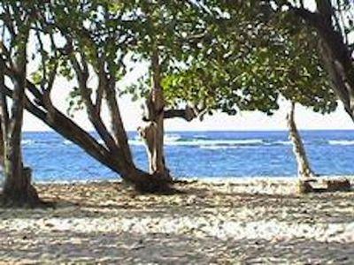 Photo for Apartment 50 m from the beach, road of the Other-Edge MOLD Guadeloupe