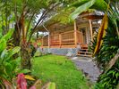 1BR Cabin Vacation Rental in Mountain View, Hawaii