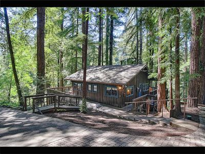 Cabin in the Redwoods