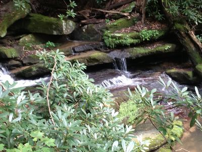 Photo for Cozy Cottage With Long Range Views And Your Own Private Creek And Step Falls
