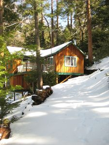 Photo for Falling Cedar Cabin-Quiet, Romantic, Surrounded by Trees. For Sale