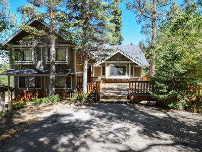 Mountain Pines Lodge: Private! Backs to the National Forest! Close the Village! Dog Friendly!