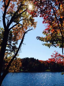 Motorcycle Ride up Route 16 - Fall Foliage Lake View