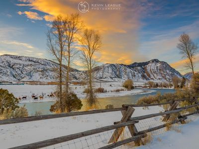 Photo for Yellowstone River Waterfront