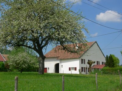 Photo for Charming HOUSE COMTOISE, spacious, large garden, private parking