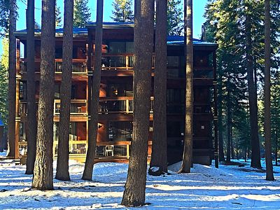 Photo for Beautiful Condo In A Peaceful Forest Setting-Pet Friendly, Quick Walk To Village