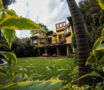 Enjoy the exotic vegetation and privacy of the garden.
