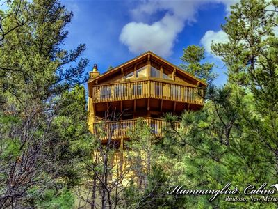 Photo for The Tree House: 'Living above the Trees!'