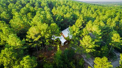 Beautiful green seclusion surrounds this cabin on 1.2 acres!