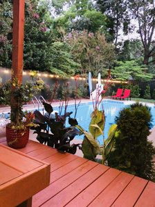 Photo for Poolside Cozy Suite w/Private Entrance & Hot tub