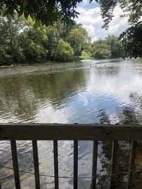 **NEW LISTING** River Front Home w/60 ft of Private Water Access