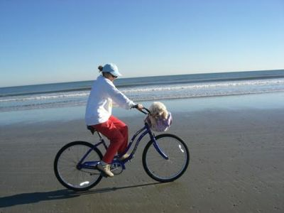 Biking on the beach !! Note Poochie in the basket!
