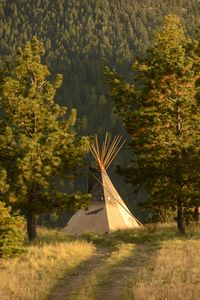 Photo for Tipis In The Rockies - A Unique Experience
