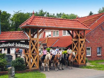Photo for Horse Ranch Lünzen, Schneverdingen  in Lüneburger Heide - 5 persons, 1 bedroom