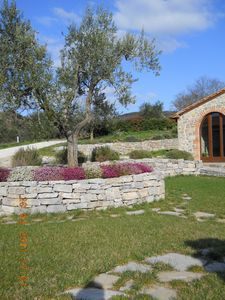 Photo for Farmhouse in Umbria: typical farmhouse surrounded by green hills
