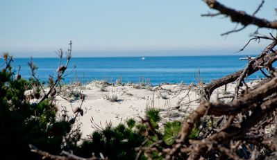 Photo for 5BR House Vacation Rental in Pacific Grove, California