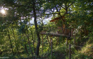 Photo for A cabin nestled in the trees with a panoramic terrace. Outstanding!
