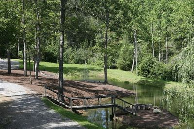 meadow area and pond with hammock