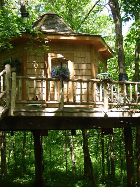 tree house ready for guests
