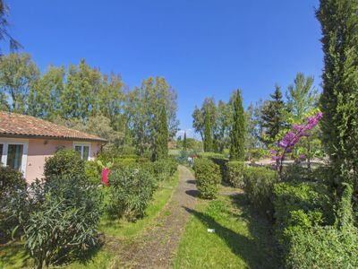 Photo for Apartment Relais in Marina di Bibbona - 4 persons, 1 bedrooms